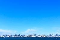 東京港からの街並
