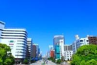 桜通りと久屋大通公園の新緑