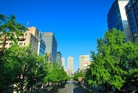桜通り錦より名古屋駅方向を望む