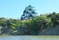 新緑の名古屋城