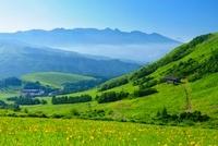 車山高原よりニッコウキスゲと八ケ岳