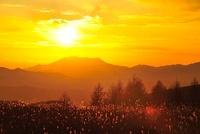 霧ヶ峰高原より御嶽山に沈む夕日 11076006520| 写真素材・ストックフォト・画像・イラスト素材|アマナイメージズ