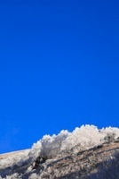 車山高原の霧氷 11076006609| 写真素材・ストックフォト・画像・イラスト素材|アマナイメージズ