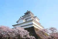 会津若松城とサクラ 11076006785| 写真素材・ストックフォト・画像・イラスト素材|アマナイメージズ