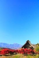 水車の里公園 紅葉と南アルプス・甲斐駒ケ岳 11076006824| 写真素材・ストックフォト・画像・イラスト素材|アマナイメージズ