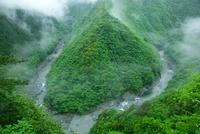 新緑の祖谷渓谷