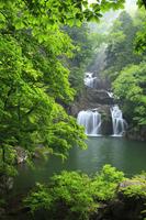 新緑の三段峡 三ツ滝