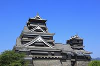 熊本城の天守閣