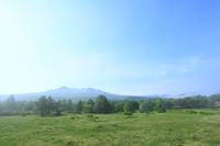 緑樹と朝霧の萱野高原より八甲田山を望む
