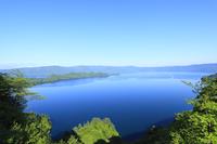瞰湖台より新緑の十和田湖