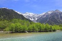 新緑の上高地 梓川と穂高連峰を望む 11076008802| 写真素材・ストックフォト・画像・イラスト素材|アマナイメージズ