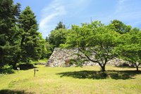 高取城跡の新緑