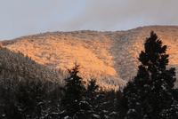 高見山の樹氷と朝焼け