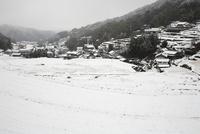 細川の棚田の雪景色