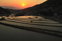 細川の棚田と夕日