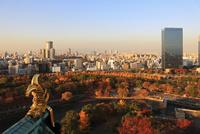 大阪城天守閣から望む夕焼けの南外濠と市街