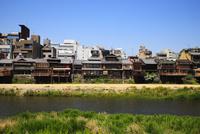 鴨川と四条の街並み