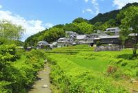 稲渕の集落
