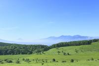 霧ケ峰高原 池のくるみより富士山と南アルプス 11076010069| 写真素材・ストックフォト・画像・イラスト素材|アマナイメージズ