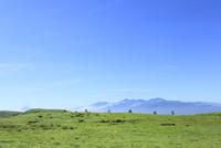 霧ケ峰高原より富士山と南アルプス