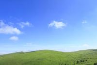 緑の高原と白雲