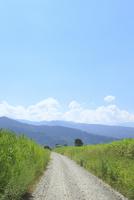 道と山並み