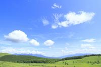 池のくるみより緑の山並み(八ヶ岳・富士山・南アルプス)