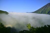 ブロッケン現象と雲海