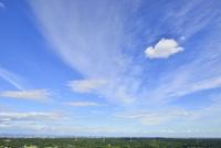 森と市街地に雲