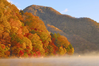 紅葉の中禅寺湖と朝霧