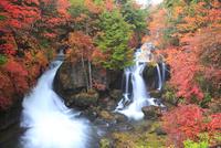 紅葉の竜頭の滝 11076010828| 写真素材・ストックフォト・画像・イラスト素材|アマナイメージズ