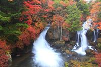 紅葉の竜頭の滝