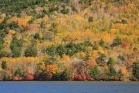 紅葉の奥日光湯ノ湖