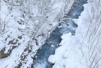 雪の美瑛川 11076010902  写真素材・ストックフォト・画像・イラスト素材 アマナイメージズ