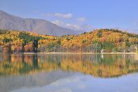 紅葉の青木湖より北アルプス・白馬三山