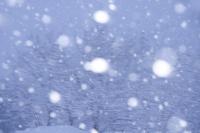 降雪と樹林 11076011004| 写真素材・ストックフォト・画像・イラスト素材|アマナイメージズ