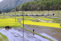大糸線とナノハナ畑