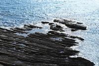 土佐清水の海岸