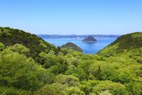 新緑の五色台から望む瀬戸内海 小槌島と大槌島