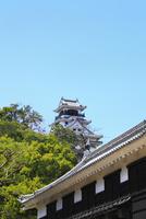 高知城 11076011425| 写真素材・ストックフォト・画像・イラスト素材|アマナイメージズ
