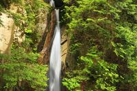 寂地峡の五竜の滝 竜頭滝