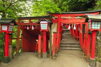 太皷谷稲成神社 表参道の鳥居