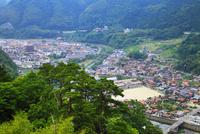 津和野城跡から望む街並み