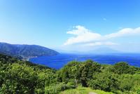 桜島と鹿児島湾