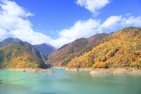 龍神湖と紅葉 遠景に北アルプス 11076012187| 写真素材・ストックフォト・画像・イラスト素材|アマナイメージズ