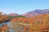 志賀高原・琵琶池の紅葉