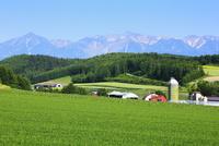富良野(十勝岳連峰と牧場)