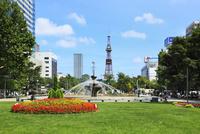 大通公園と札幌テレビ塔