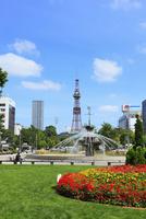 大通公園と札幌テレビ塔 11076012755  写真素材・ストックフォト・画像・イラスト素材 アマナイメージズ