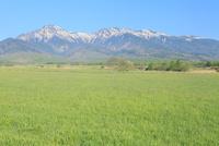 野辺山高原 草原と八ケ岳